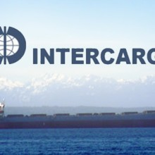 Intercargo logo 11
